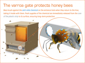 varroa_gate_protects_4_